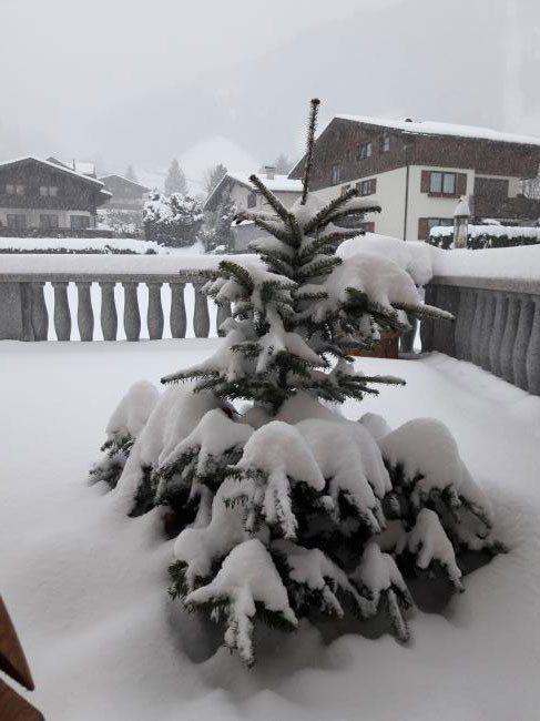 """Winterurlaub in der Ferienwohnung """"Drei-Berge-Blick"""" in Dorfgastein, Haus Schnepfleitner"""